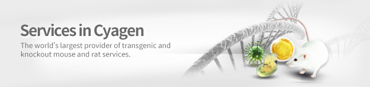 transgenic and knockout mouse and rat services in Cyagen