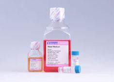 Strain ICR Mouse Embryonic Fibroblast Growth Medium MUXEF-90011