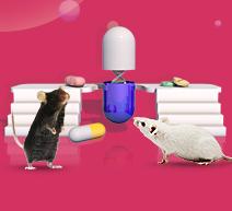 Humanized Mice - Accelerate Antibody Drug Development