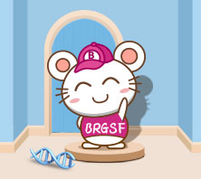 BRGSF 중증 면역 결핍 마우스