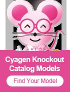 녹아웃(KO) 마우스 | Cyagen Korea