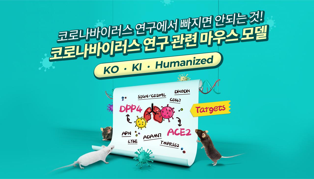 ACE2 Mice,Cov mouse model,코로나바이러스 연구에서 빠지면 안되는 것!코로나바이러스 연구 관련 마우스 모델!KO,KI,Humanized | Cyagen Korea