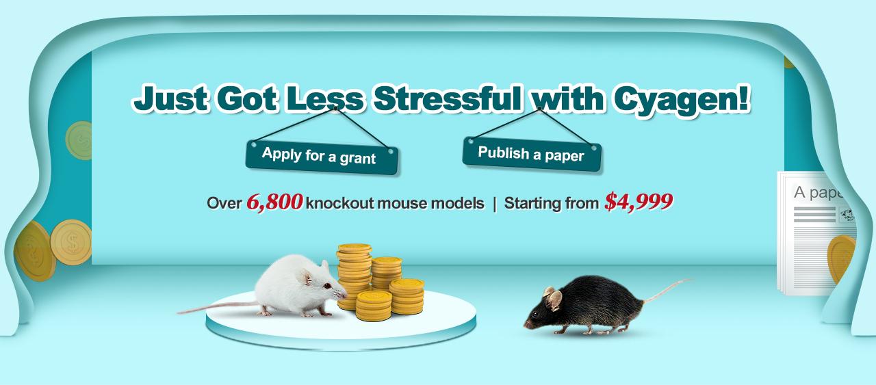 CRISPR-AI KO Mice,Unbeatable Prices for You