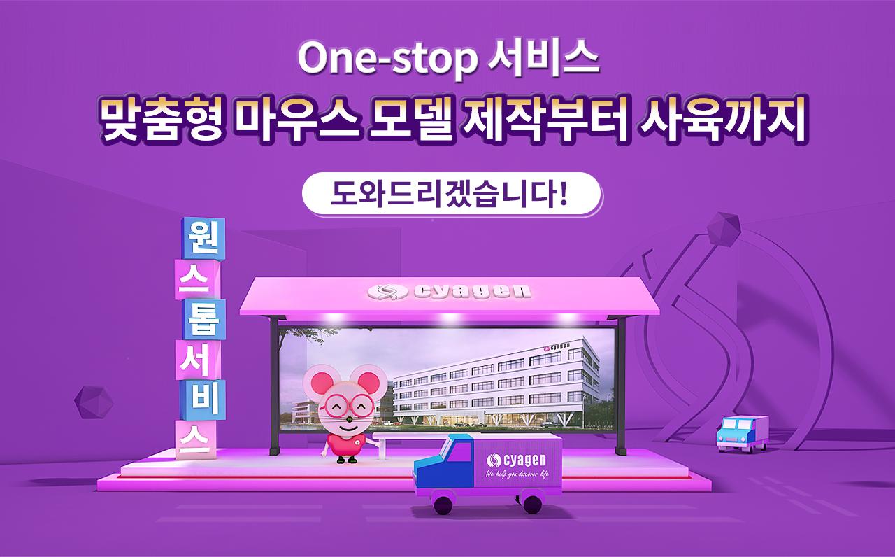 knockout mouse model and breeding service, One-stop 서비스, 맞춤형 마우스 모델 제작부터 사육까지 도와드리겠습니다 | Cyagen Korea